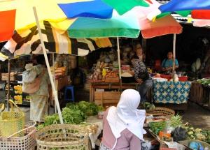 indonesia copyright melita podesta