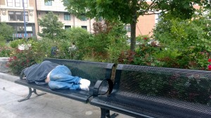 sleeping-on-bench